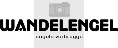 we-logo-medium