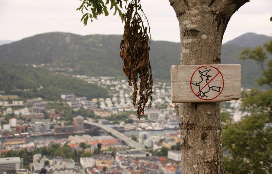 heksen verboden